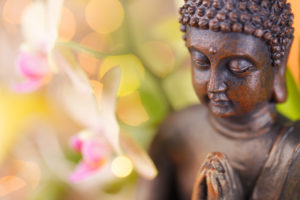 Buddha Statue Next to Pink Orchids