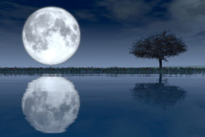 Reflection of Moon in Lake