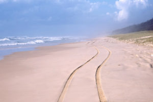 Path on the beach