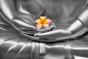 Buddha Mudra with Flower